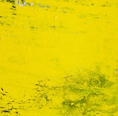 Untitled Acrylic on canvas 33cm×33cm